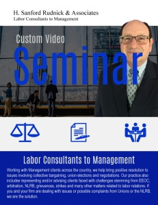 Custom Video Seminars